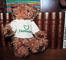 Tasmanian Bear by Evita