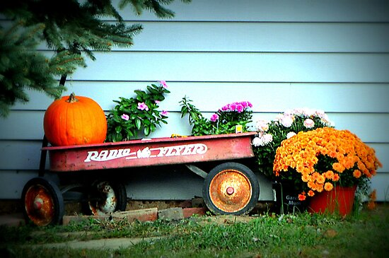 The Old Radio Flyer by Gayle Dolinger