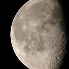 Half Moon by Mark Jarvis