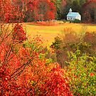 CHURCH,CADES COVE by Chuck Wickham