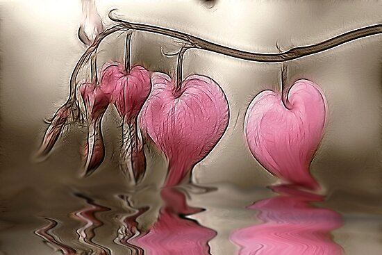Bleeding Hearts by Kelly Cavanaugh