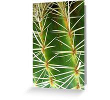 Prickly Pattern Greeting Card
