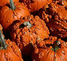 Bumpy Pumpkins by jessiebea