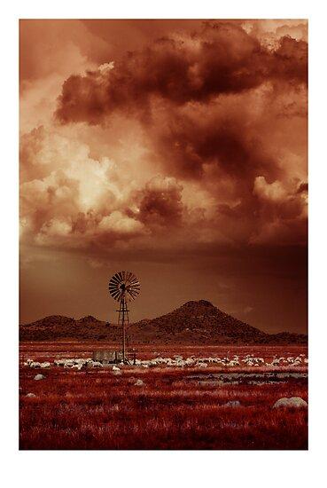 Gathering Storm by Nico  van der merwe