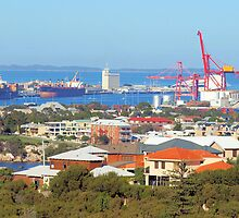 Fremantle Harbour by John Peel