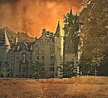 Castle Marnix de Sainte Aldegonde - Bornem - Belgium by Gilberte