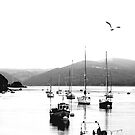 Aberdyfi Harbour by Lydia Griffiths