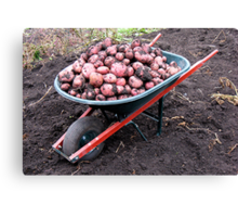 Thanking God for a Bountiful Harvest Canvas Print
