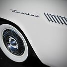 Ford Thunderbird by Sherry Graddy