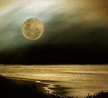 Moonwatch by Jill Ferry