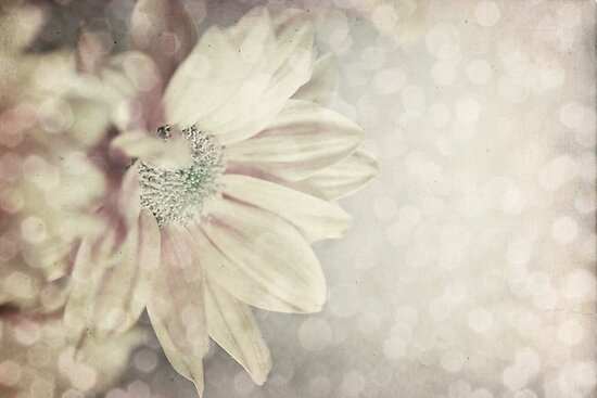 Sparkling moment by Dominika Aniola