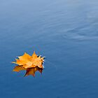yellow leaf by nordvil