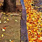 An Autumnal Mess by Sarah Fulford