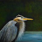 Blue Heron by Rich Summers