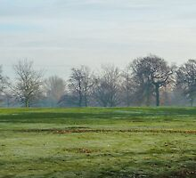 Frosty Park 2 by kirstyf