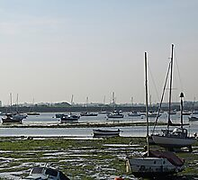 Low Tide at Emsworth by bluesand