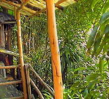 Rain Forest Cabin 2 Thailand by Hugh Fathers