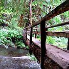 Bridge of Infinity by ReveLinWonder