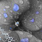 Hope of Glory by ReveLinWonder