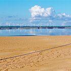 Lake Bonney looking over Windfarm South East South Australia. by Lisa Woodman