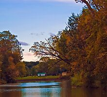 A day on  the river by cherylc1