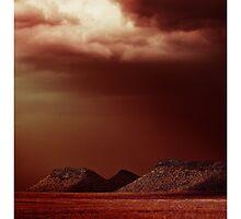 Free State by Nico  van der merwe