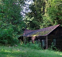 Cabin at Raccoon State Park by Gordon Elwell