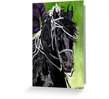 Freisian Horse Portrait Greeting Card