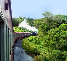 Outeniqua choo-choo by Carisma