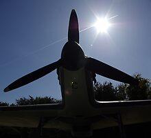 Spitfire. by spookygardener