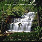 Liffey Falls, Tasmania, Australia by Debbie Steer
