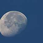 Blue Moon by jskouros