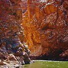 Ellery Creek Big Hole 1 by Paul Moore