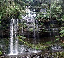 Russel Falls Tasmania by Fred  Smith