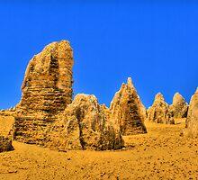 Pinnacles - Nambung National Park by Daniel Fitzgerald