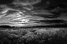 Stoughton Sunset BW by Andy Freer