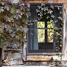 Ghost in the window by Alice Kahn