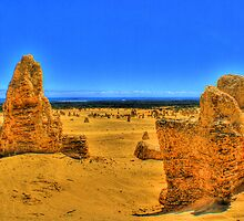 Pinnacles - Nambung National Park by Daniel Fitzgerald