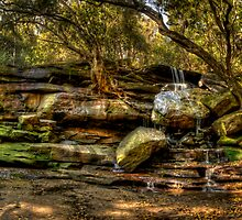Somersby Falls Panorama by Jason Ruth