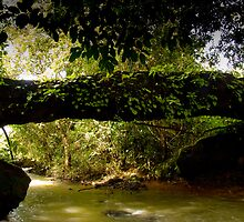kallu sanka ( stone bridge) by Dinni H