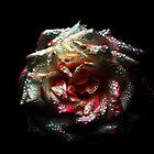 Gothic Rose by Deb  Savage