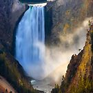 Lower Falls, Grand Canyon of Yellowstone. Yellowstone National Park. Wyoming. USA. by photosecosse /barbara jones