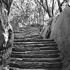 Stairs by chianing