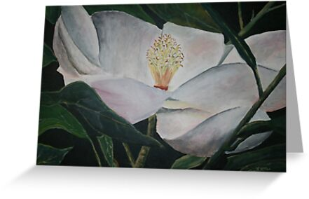 magnolia flower oil painting by derekmccrea