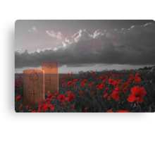 We must never forget - In Honour of Armistice Day Canvas Print
