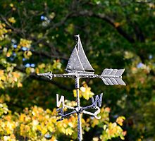 Weathervane by MDossat