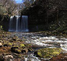 Sgwd yr Eira Waterfall by Michael Field