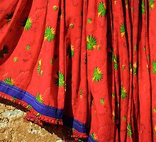 Red Sari Dress on Wall, Rajsthan (India)  by Petr Svarc