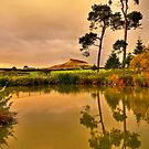 Roseberry Topping from Aireyholme Farm by Phillip Dove