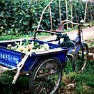 Blue Wagon in China by eyesoftheeast